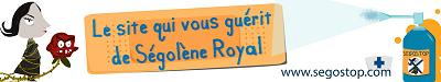 La blogosphère peut-elle faire gagner (ou perdre) Ségolène Royal ?