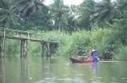 La WWF : un rapport inquiétant : la guerre de l'eau a commencé …