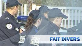 PARIS : les gangs gangrénent la capitale !!