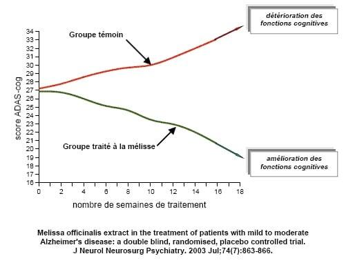 Alimentation fonctionelle et maladies dégénératives