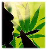 Le Cannabis pourrait ralentir l'évolution du cancer de la prostate