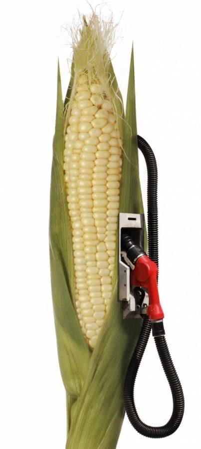 Les bio carburants ne sont pas l'idéal