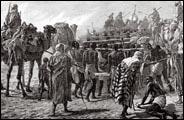 La traite négrière arabo-musulmane, vue par Tidiane N'diaye