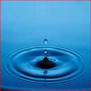 Faire des économies : sur l'eau et l'énergie