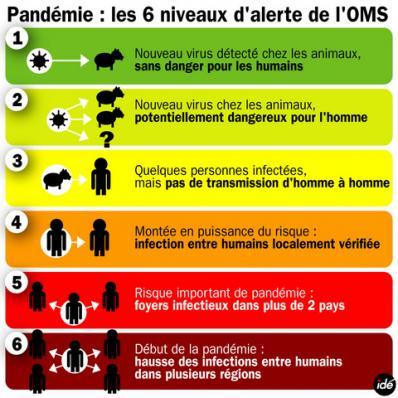L'alerte A H1N1 passera au niveau 6!