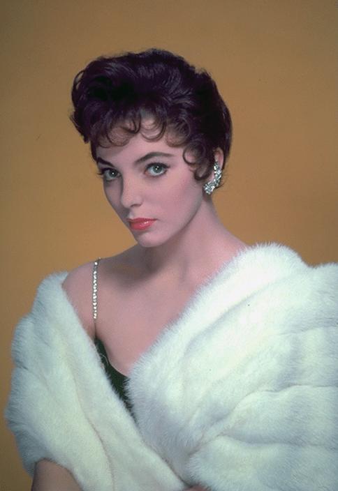 Vieilles Gloires dorées : Joan Collins