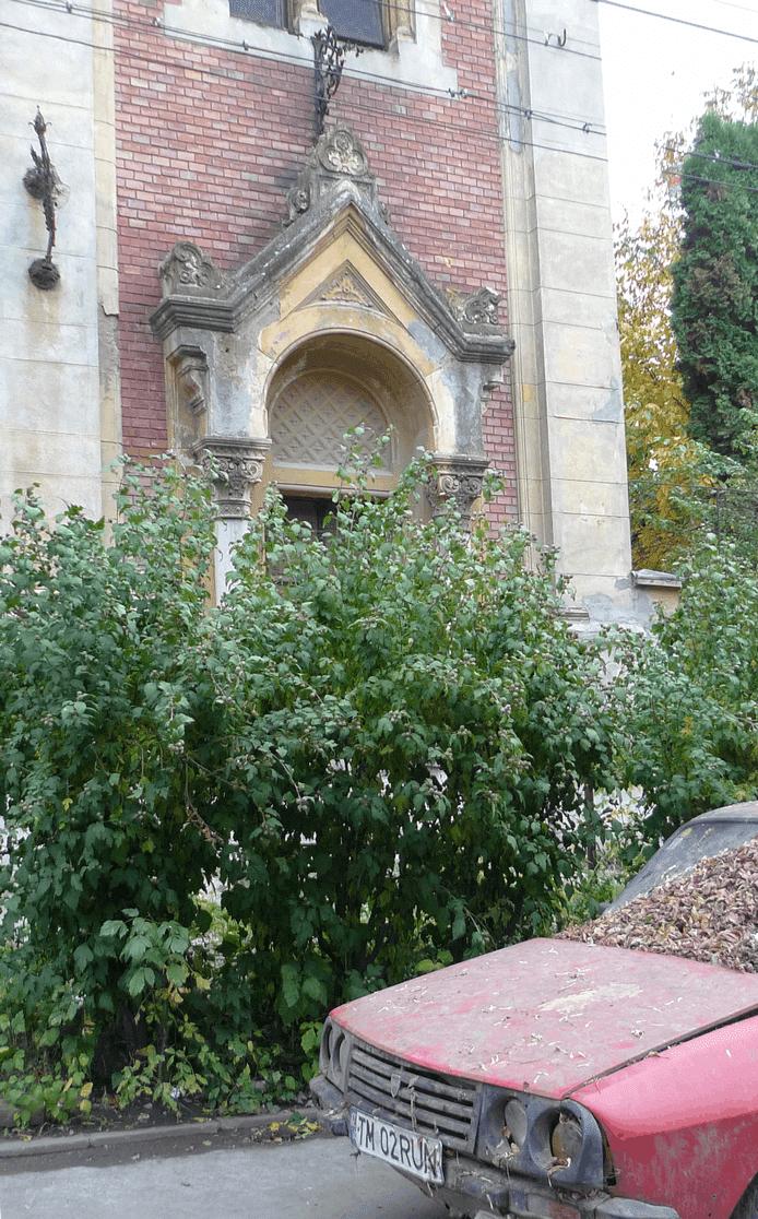 Photo du jour : la synagogue « abandonnée »