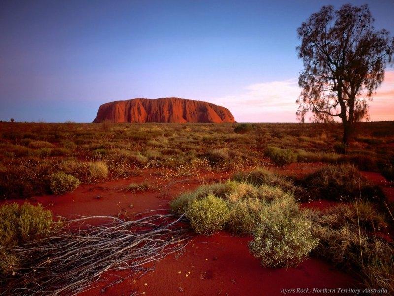 L'Australie, pays de rêve