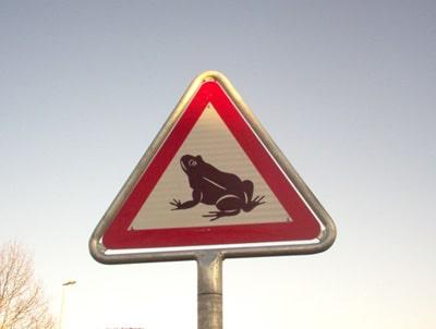 Protégeons les grenouilles
