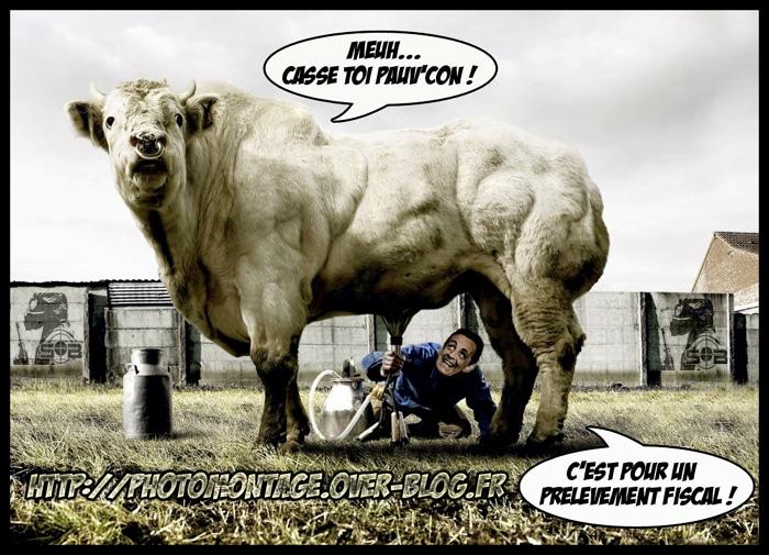 Voila pourquoi SARKOZY n'ira pas voir… les vaches !