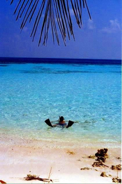 Plongée aux Maldives.