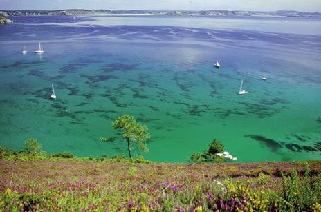 Un petit coin de paradis sauvage: La presqu'île de crozon