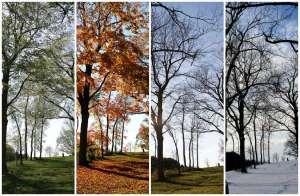 Réagir aux petits tracas du changement de saison.