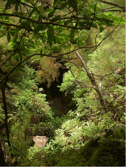 Woerthgate : Woerth et la forêt de « Conpiège »