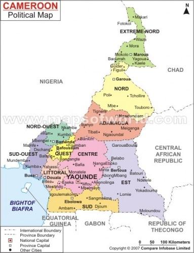 Présidentielles du 09 octobre 2011 au Cameroun : que peut l'opposition ?