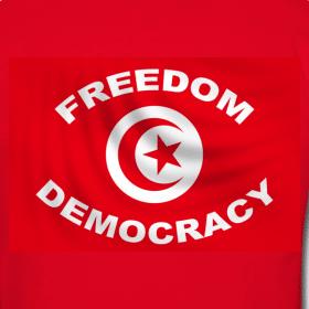 Tunisie : des « révolutionnaires » prennent la révolution en Otage.