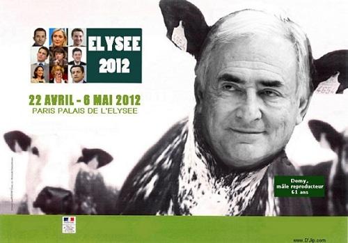 DSK: candidat à FLEURY-MEROGIS !!!