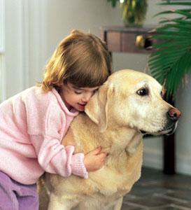 Les enfants face aux animaux de compagnie
