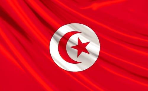 Tunisie : quelle est la situation 5 mois après la révolution.