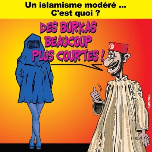 Tunisie : Islamisme modéré … ?