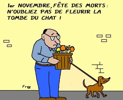 1er Novembre : n'oubliez pas de fleurir la tombe du chat !