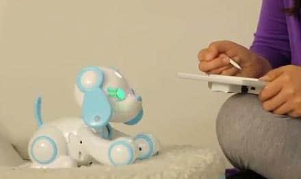 Wappy Dog : le chien robot qui va faire un malheur !