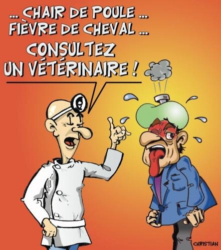 Mammifères de FRANCE, unissez-vous ! …