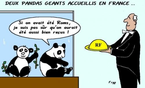 Deux  pandas  géants  accueillis  en  France .  ;