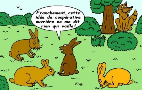 Coopérative  ,  vous  avez  dit  coopérative  ?
