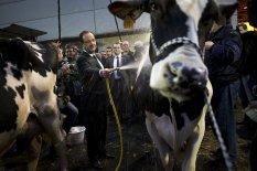 MALI : Une aubaine pour le président Hollande