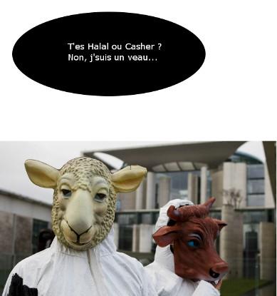 Halal ou Casher ?
