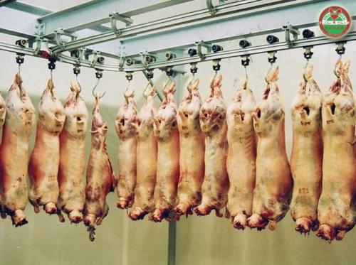 La viande « Halal » est-ce tellement important ?