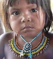 'Ils nous tuent' – Une tribu brésilienne appelle à l'aide