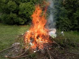 Interdit de brûler ses déchets verts : pourquoi ?