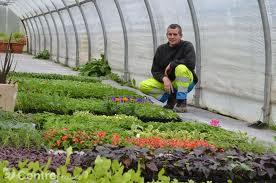 Jardineries : attention à ne pas aller trop vite