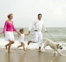Les chiens aussi ont leurs plages !