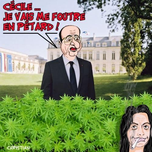 Le Cannabis … débat fumant !
