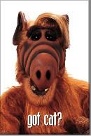 Alf…cachez vos chats!