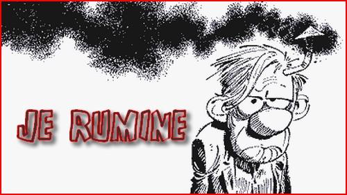 » je rumine», tu rumines, il rumine …