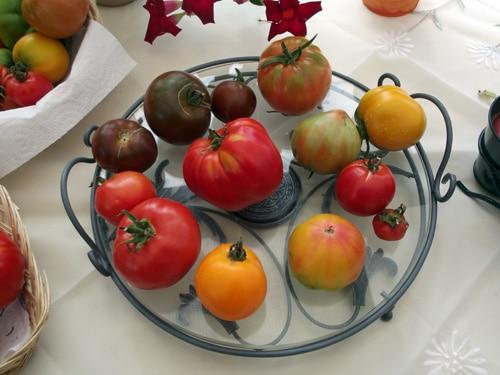 Tomates, osez la couleur.