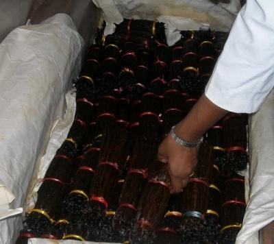 Vanille: épice enchanteresse
