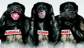 Laurent Baffie « Les Bonobos » : du théâtre qui part dans tous les sens !