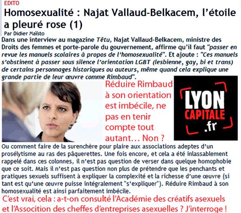 Vote des étrangers, drogues, homosexualité : hiatus à l'UMP