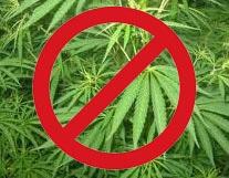 Dépénalisation du cannabis, le débat interdit !
