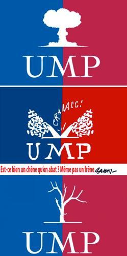 UMP : pour la Conare, un enfoiré plus égal qu'un autre ?