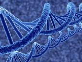 Les mystères de la vie révélés par l'ADN !