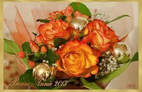Mes voeux de bonne année 2013