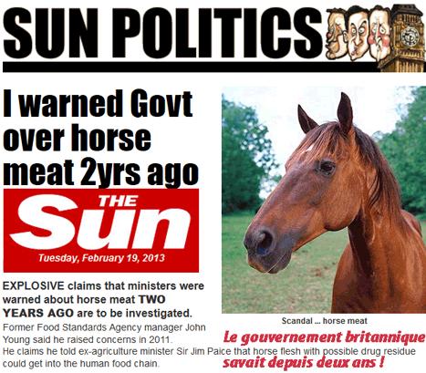 Viande de cheval : connivence du silence entre industriels et autorités en Belgique ?