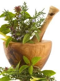 Renouer avec les médecines naturelles
