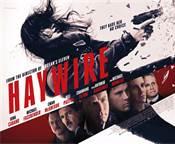 Piégée (Haywire) : Quand le film d'action retrouve ses lettres de noblesse
